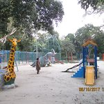 IMG_6106_large.jpg