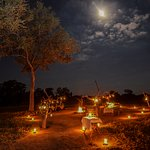Bush dinners under the stars are a great way to end an exciting day in the bush