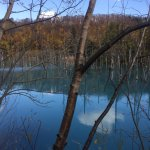 Scenic Blue Pond