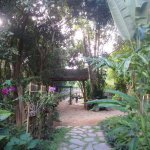 Foto de Zen Namkhan Boutique Resort