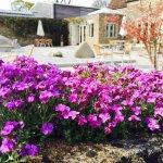 Sacred Stone Garden and Cafe Nouveau terrace