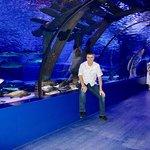 Photo of Antalya Aquarium