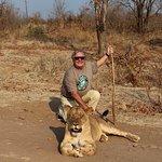 Photo of Lion Encounter