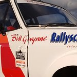 Professional Rally Cars