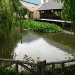 Pond at Tu Tri