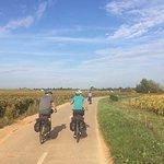 Riding through the vineyards of Burgundy