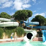 Maritim Pine Beach Resort Foto