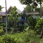 A view of the lush foliage and the room buildings. Palauan architecture