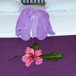 Foto de Crystal Bay Resort