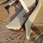 Photo of Sol Y Mar Paradise Beach