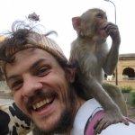Monkey friend