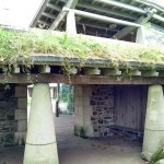 Grass roof connecting buildings