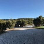 Photo de Le Temps des Olives