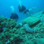 Adventure Divers Bali Foto