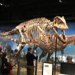 Foto de Denver Museum of Nature & Science