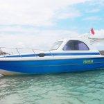 full day speed boat