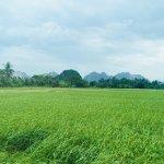 Indochina Junk Foto