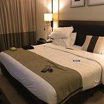 賽達艾巴爾薩飯店照片
