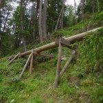 Waalwege Anlage, quer durch den Wald angelegt