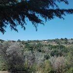 Photo of Agriturismo Il Cicaleto