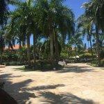 Photo de Dreams Palm Beach Punta Cana