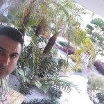 Mitsis Alila Resort & Spa Foto