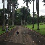 Photo of Darwin Botanic Gardens