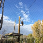 Photo de Zoo Ecomuseum