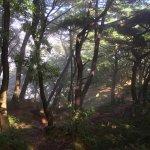 Photo of Geumgang Park