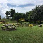 Foto de Queen's Park Savannah