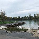 Billede af Lake Ontario