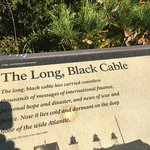 long black cable