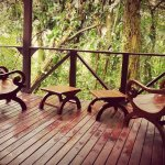 Photo of Rio Celeste Hideaway Hotel