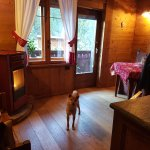 Photo de Le Petit Nid Bed and Breakfast