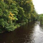 The River Lossie