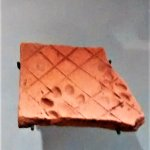 Terra cotta tile in the museum with prints from an ancient dog