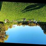 Photo de Englischer Garten