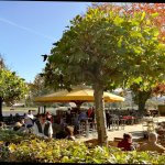 Photo of Schillergarten
