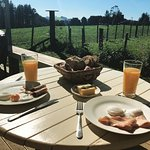 Fantastic breakfast on the deck in the sun overlooking the farm!