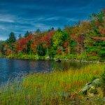 William's Pond in October