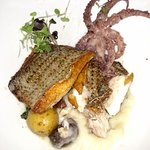 Sea Bass and baby octopus