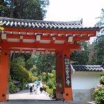 Photo of Mimurotoji Temple