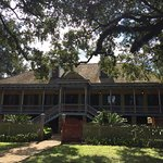 Foto de Laura Plantation: Louisiana's Creole Heritage Site