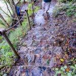toward downstream