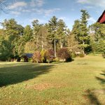 Large field and picnic area outside cabin