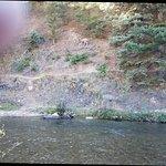 Photo de Best Western Rivers Edge
