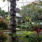 Ubud Bungalow Foto