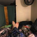 Foto de The Green Tortoise Hostel