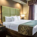 Photo of Comfort Suites New Bern