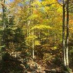 Franconia Notch State Park Foto